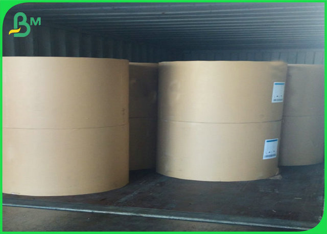 A0 A1 24 36 inch white Copy Paper Roll
