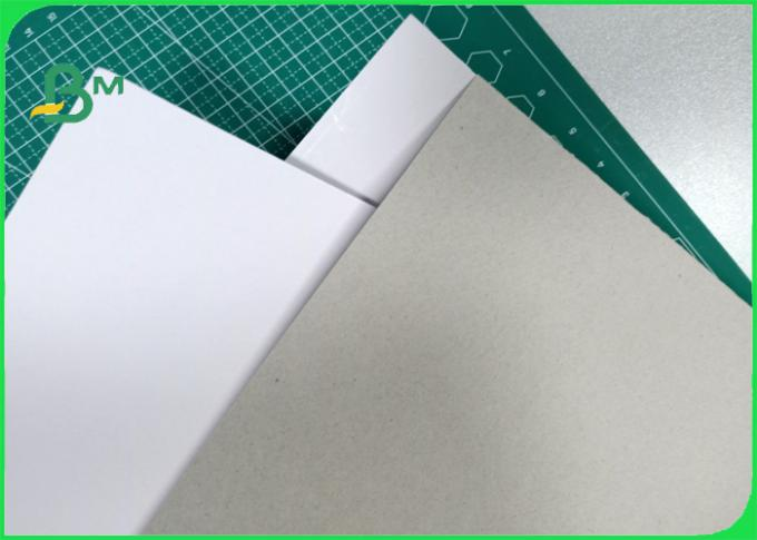 200gsm - 800gsm excellent toughness ink absorbability Duplex board in sheet / roll