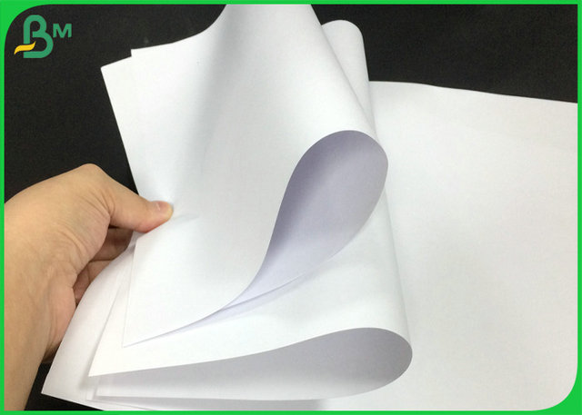 70lb 80lb White Offset Printing Paper Roll With FSC Certification